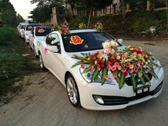 Cho thuê xe du lịch rẻ nhất Tuy Hòa, Phú Yên